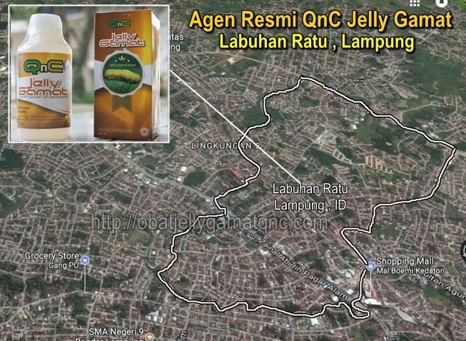 Agen Resmi QnC Jelly Gamat Di Labuhan Ratu , LAMPUNG