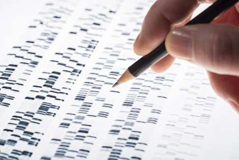 The mysterious 98%: Scientists look to shine light on the 'dark genome'