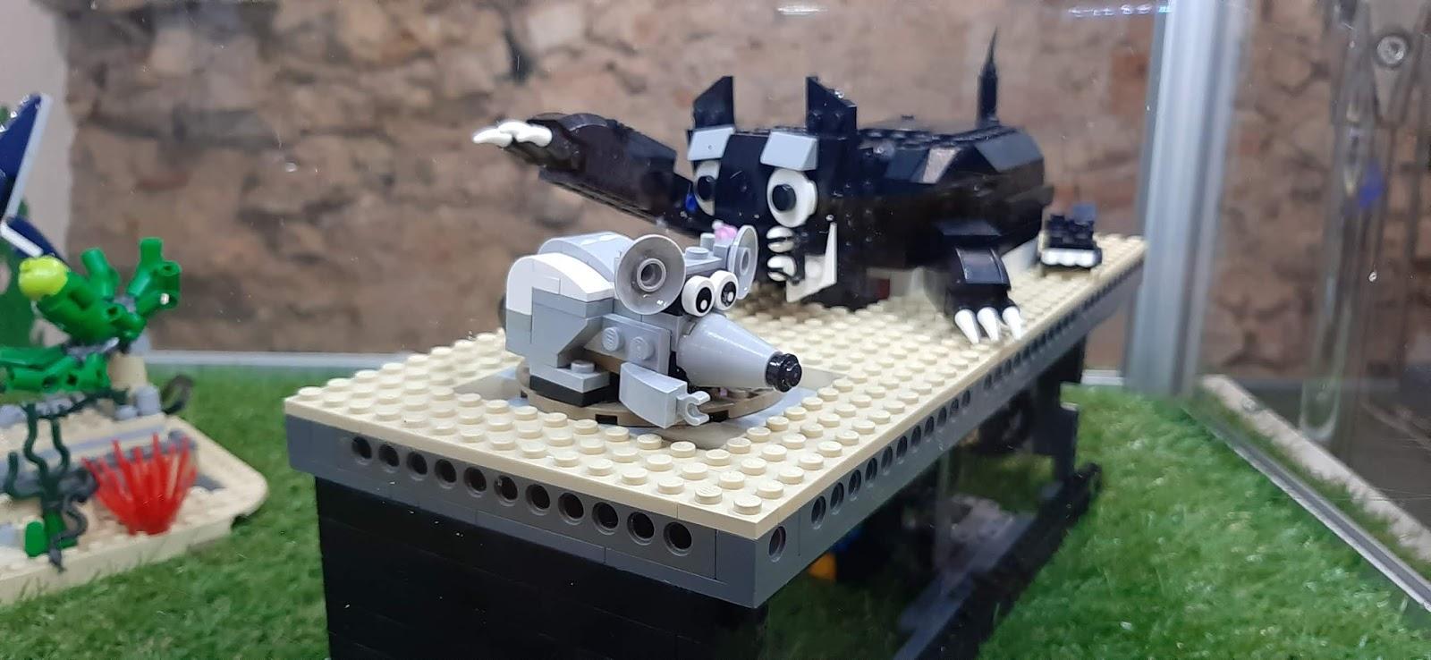 sala zabaw kraków
