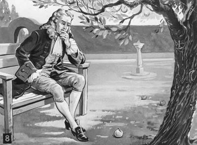 تفاحة نيوتن و سر الجاذبية