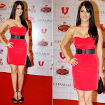 Sunny Leone  hot wallpapers collection in 2013 14 after bollywood entry