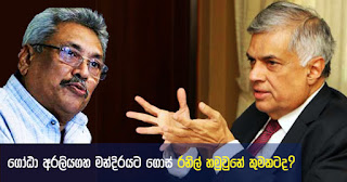 For what purpose did Gota go to Temple Trees and meet Ranil?