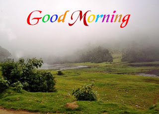 Cool Good Morning Picture with Nature