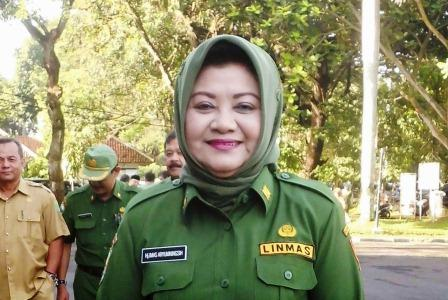 Wabup Subang: Pemerintahan Tetap Berjalan Normal