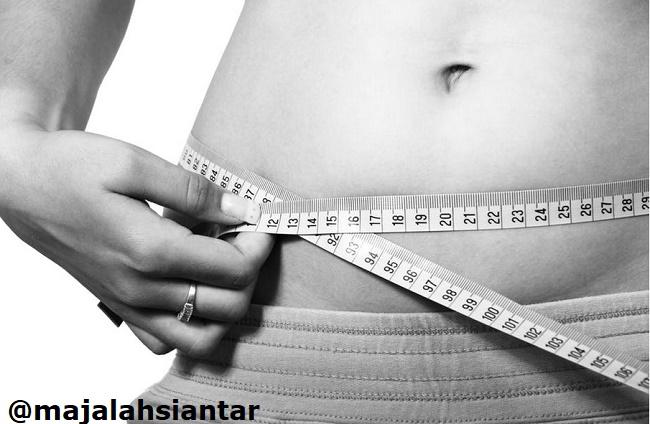Pola Makan untuk Diet Sehat yang Disarankan