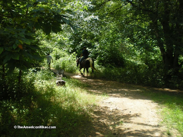 A hiker and horseback rider traveling together on the trails at Woodlawn Trust Wildlife Preserve