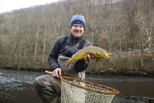 Brown trout on Clinch River Tennessee