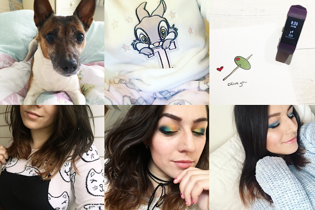 What Cat Says - January & February Through Instagram