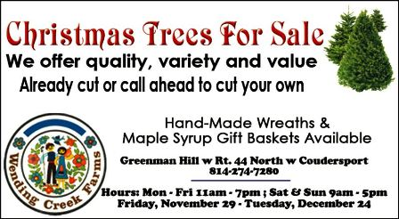 11-29 thru 12-24 Christmas Trees For Sale