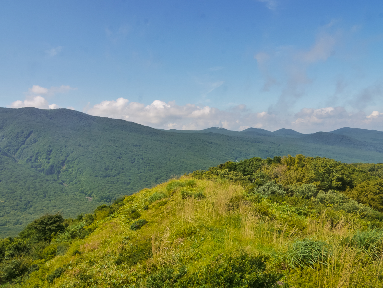 hiking tail in jeju Eoseungsaengak Trail