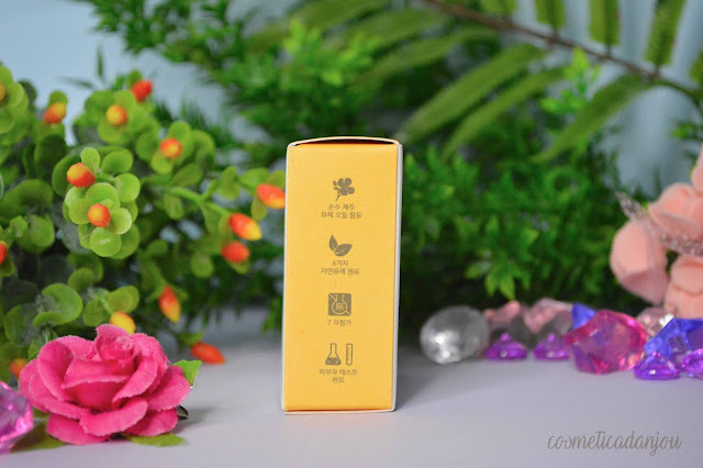 Innisfree Lip Sleeping Mask #Canola Oil Review