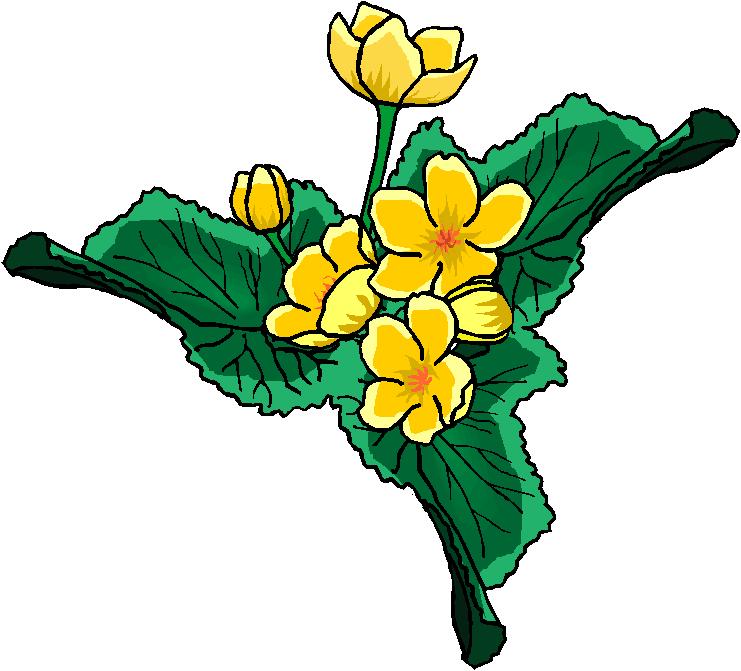 clip art flowers microsoft - photo #20