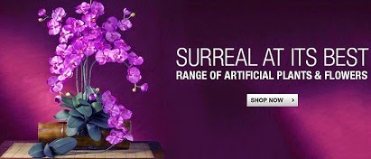 Decorate Home with Artificial Plants & Flowers with Natural Feel @ Upto 50% Discounted Price @ Flipkart