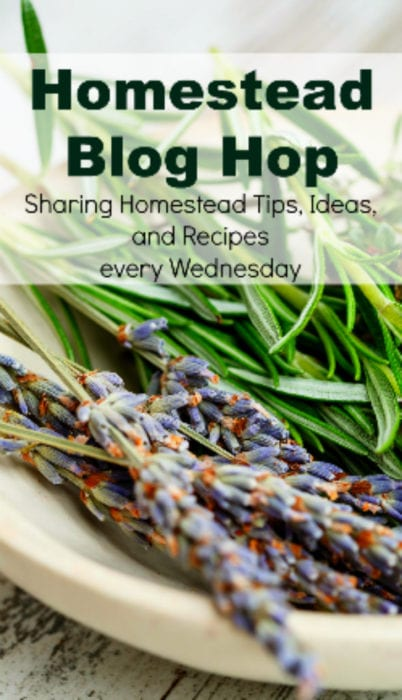 The Cape Coop Homestead Blog Hop Wednesdays