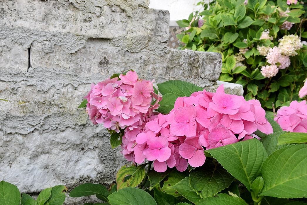 Gartenmauer aus Natursteinen bauen.