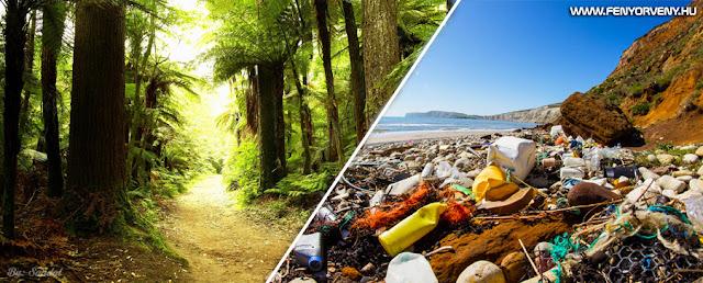 A természet védelme - Tegyél érte, hogy tisztább bolygón élhess!