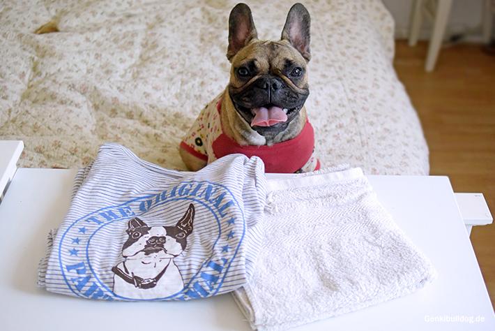 Sind nasse Handtücher für Hunde geführlich?