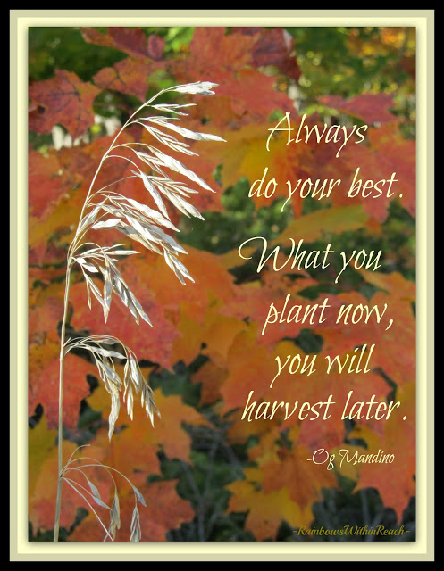 Autumn Posters Picture Autumn Quotes For Kids