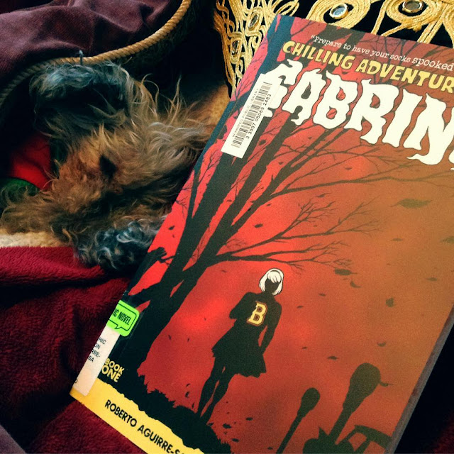 Murchie pokes his head out of a red blanket cave, his nose lowered to touch his extended front paws. Propped up in front of him is a trade paperback copy of The Chilling Adventures of Sabrina. Its cover features a white-haired girl silhouetted against a red sky, a bare tree arching above her.