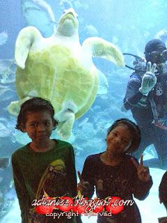Cuti Sekolah Kami Jalan-Jalan KL | Aquaria KLCC
