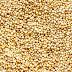 Semintele de Quinoa-beneficii