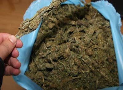 Ηγουμενίτσα: Εντοπίστηκαν 1,8 κιλά κάνναβης μέσα σε κάδο απορριμάτων