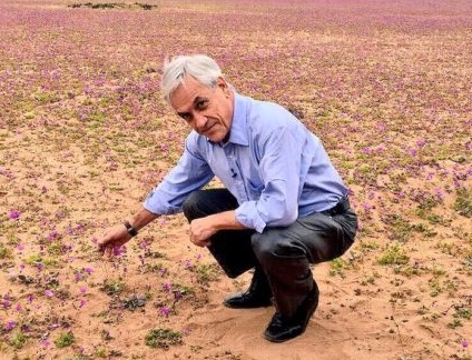 Ex presidente posa sobre flores del Desierto Florido