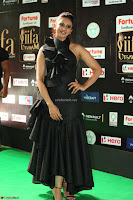 Rakul Preet Singh Sizzles in a Sleeveless Dress at IIFA Utsavam Awards 2017  Day 2  Exclusive 56.JPG