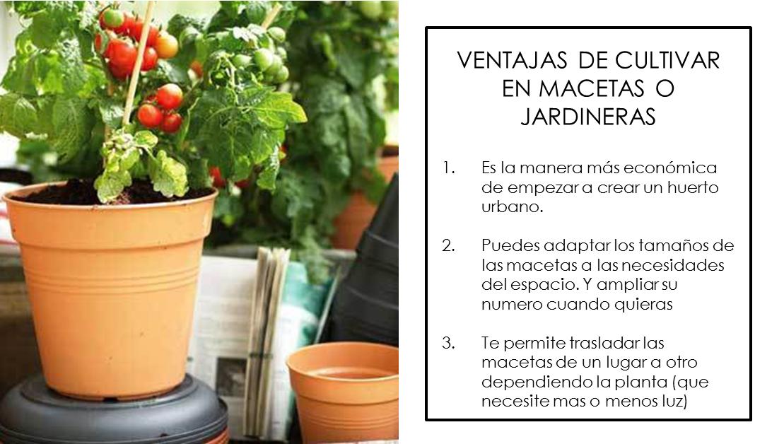 Decoraci n f cil 7 trucos para un huerto urbano en - Jardineras huerto urbano ...