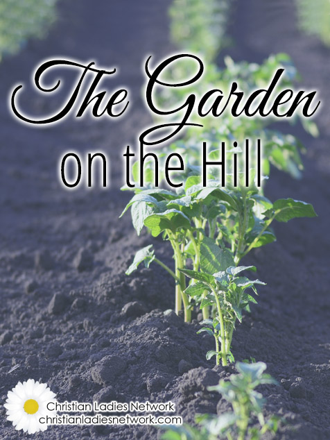 The Garden on the Hill - The Christian Ladies Network