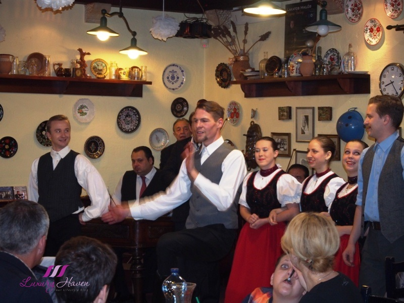 hungarian folk dance dinner performance