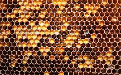 ячейки SSD-диска похожие на пчелиные соты