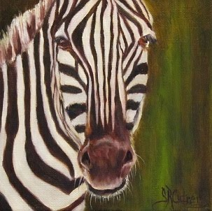 """Racer"", a Zebra portrait, no-frame needed"