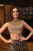 Actress Model Sarah Hopkins Latest Pos in Lehenga Choli at SIIMA Short Film Awards 2017 .COM 0126.JPG