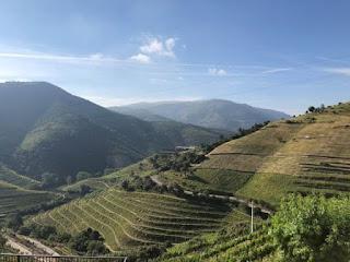 Enoturismo de Portugal