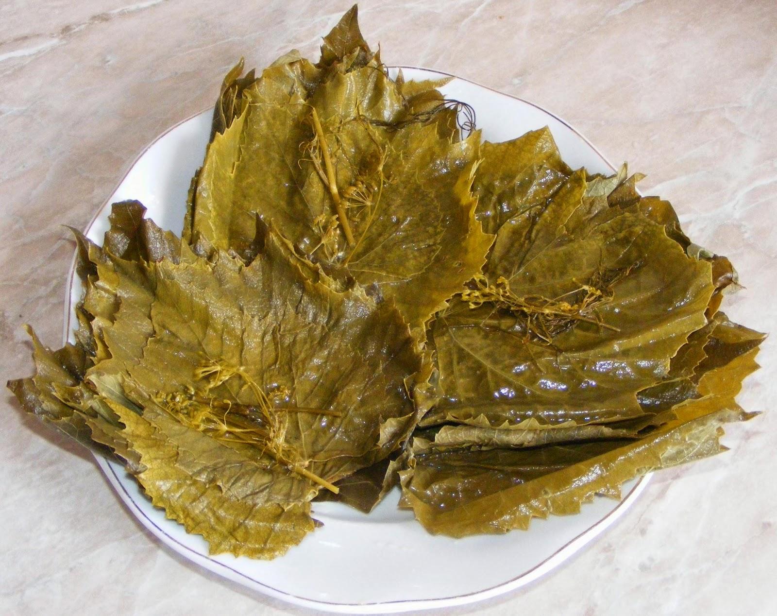 Frunza de vie murata pentru iarna retete culinare,