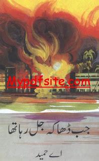 Jab Dhaka Jal Raha Tha By A Hameed