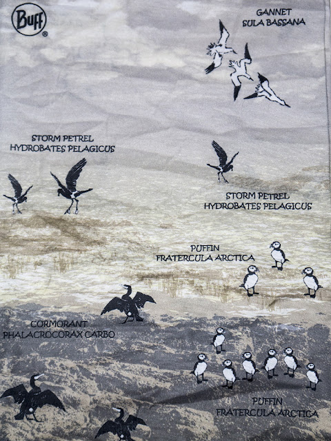 Marine Birds Buff Design