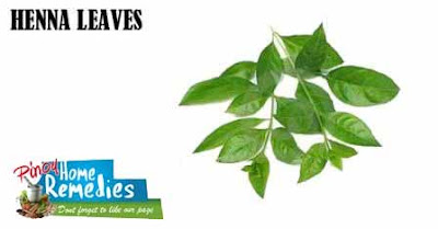 Home Remedies For Hair Loss: Henna Leaves