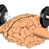 Top 5 foods for healthy brain development   Health and Fitness Rapidly