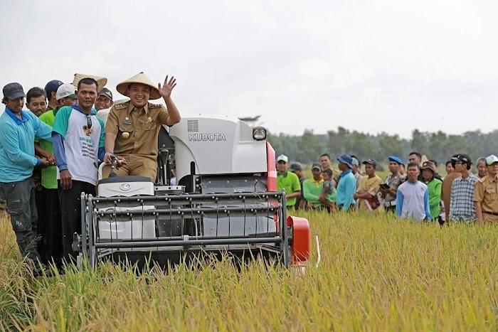 Provinsi Lampung Tuntaskan Tugas Naikkan Produksi 1 Juta Ton Padi