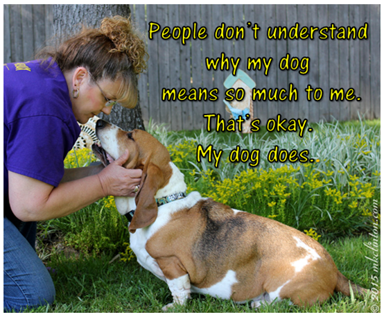 "Me and Bentley Basset Hound with ""People don't understand"" meme"