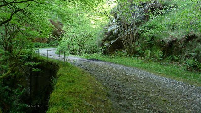 Sendero en el Río Infierno - Asturias