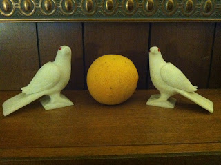 Doves and grapefruit by Maja Trochimczyk