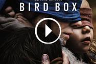 »VOIR HD Télécharger Bird Box film streaming HD en enligne VOSTFR