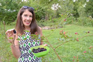 Nancy Braud with the first thornless blackberries from the garden at St Francis Cottage