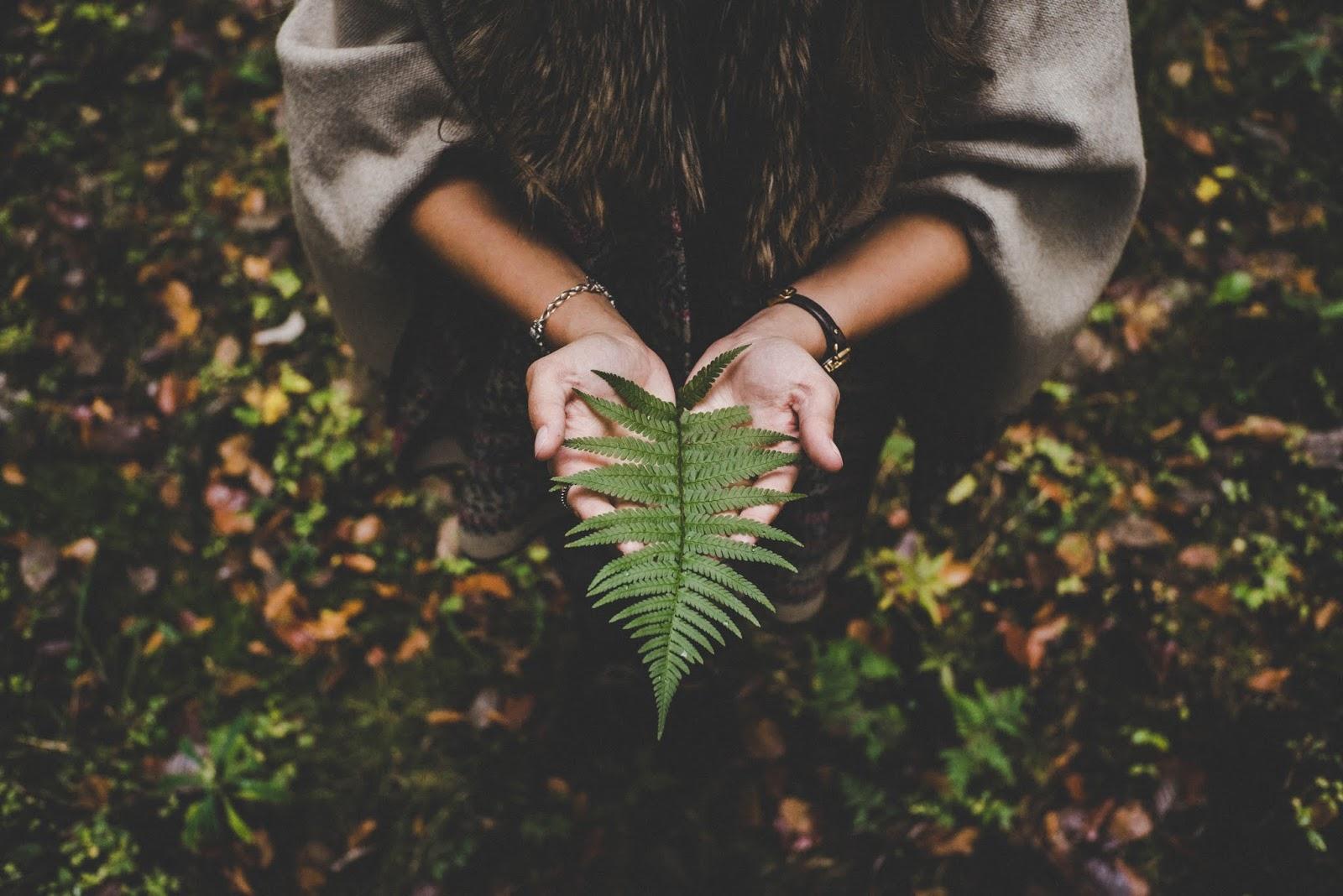 Fotos tumblr com mão, mão natureza, mão bonita, quero te trazer paz
