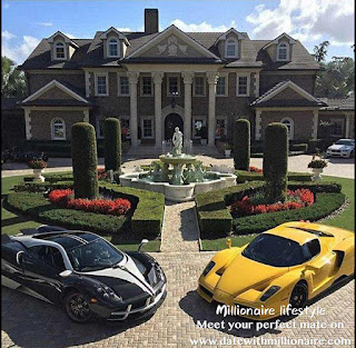 At a millionaire's party, the sports cars parked in front of the doors