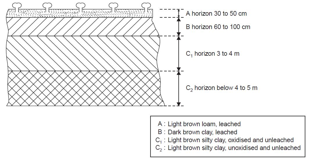 Civilstagram about soil formation soil profile for Formation of soil diagram