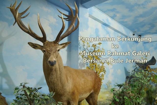 pengalaman berkunjung ke museum rahmat galeri bersama bule jerman